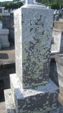 墓石クリーニング