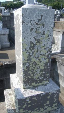 お墓のメンテナンスクリーニングお掃除なら伊豆伊東の石井石材へ (1)
